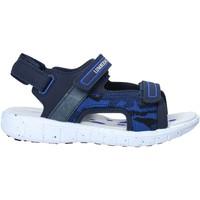 kengät Lapset Urheilusandaalit Lumberjack SB28206 006 S01 Sininen
