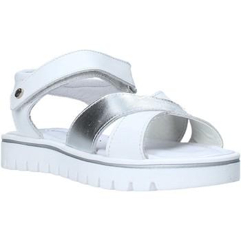 kengät Tytöt Sandaalit ja avokkaat Melania ME4108D0S.B Valkoinen