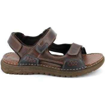 kengät Miehet Sandaalit ja avokkaat Grunland SA2526 Ruskea
