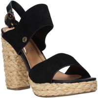 kengät Naiset Sandaalit ja avokkaat Wrangler WL01500A Musta