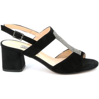 kengät Naiset Sandaalit ja avokkaat Grunland SA2516 Musta