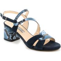 kengät Naiset Sandaalit ja avokkaat Grunland SA2515 Sininen