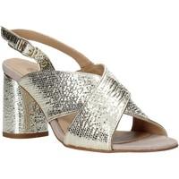 kengät Naiset Sandaalit ja avokkaat IgI&CO 5192211 Muut