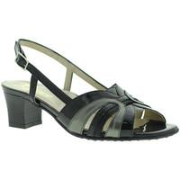 kengät Naiset Sandaalit ja avokkaat Grace Shoes E5080T Musta