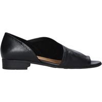 kengät Naiset Sandaalit ja avokkaat Bueno Shoes N5112 Musta