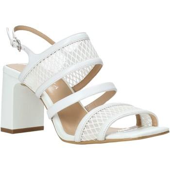kengät Naiset Sandaalit ja avokkaat Apepazza S0MONDRIAN10/NET Valkoinen