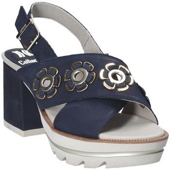 kengät Naiset Sandaalit ja avokkaat CallagHan 22600 Sininen