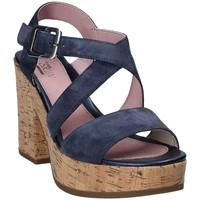 kengät Naiset Sandaalit ja avokkaat Stonefly 110365 Sininen
