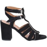 kengät Naiset Sandaalit ja avokkaat Mally 6272 Musta