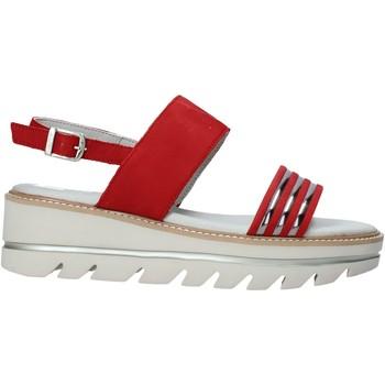 kengät Naiset Sandaalit ja avokkaat Mally 6532P Musta