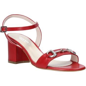 kengät Naiset Korkokengät Casanova LUNT Punainen