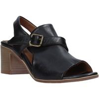 kengät Naiset Sandaalit ja avokkaat Bueno Shoes 9L102 Musta