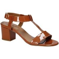 kengät Naiset Sandaalit ja avokkaat Mally 3895K Ruskea