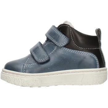kengät Pojat Matalavartiset tennarit Balocchi 601729 Blue