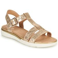 kengät Naiset Sandaalit ja avokkaat Geox D SANDAL HIVER B Kulta