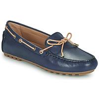 kengät Naiset Mokkasiinit Geox D LEELYAN C Sininen / Beige