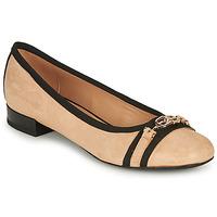 kengät Naiset Balleriinat Geox D WISTREY D Beige / Musta
