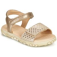 kengät Tytöt Sandaalit ja avokkaat Geox J SANDAL HAITI GIRL Beige / Kulta