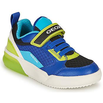 kengät Pojat Matalavartiset tennarit Geox GRAYJAY BOY Sininen / Lime