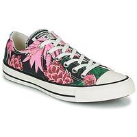 kengät Naiset Matalavartiset tennarit Converse CHUCK TAYLOR ALL STAR JUNGLE SCENE OX Vaaleanpunainen / Vihreä