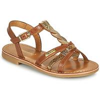 kengät Tytöt Sandaalit ja avokkaat Les Tropéziennes par M Belarbi BADAMI Kamelinruskea / Kulta