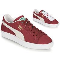 kengät Matalavartiset tennarit Puma SUEDE Viininpunainen