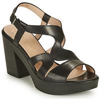 kengät Naiset Sandaalit ja avokkaat Wonders PAROTI Musta