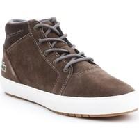 kengät Naiset Bootsit Lacoste Ampthill Chukka 417 1 Caw Ruskeat