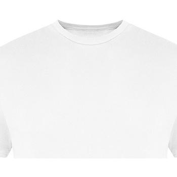 vaatteet Miehet Lyhythihainen t-paita Awdis JT100 White