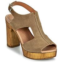 kengät Naiset Sandaalit ja avokkaat Myma POULISSA Taupe