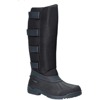 kengät Miehet Bootsit Cotswold  Black