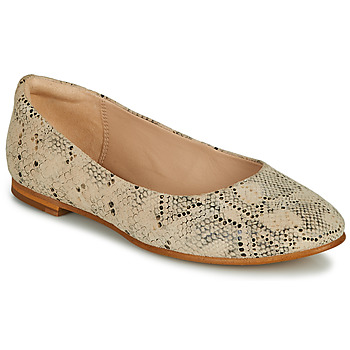 kengät Naiset Balleriinat Clarks GRACE PIPER Beige / Python