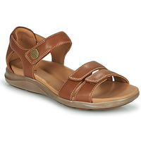 kengät Naiset Sandaalit ja avokkaat Clarks KYLYN STRAP Beige