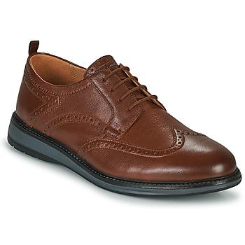 kengät Miehet Derby-kengät Clarks CHANTRY WING Ruskea