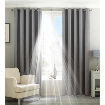 Koti Verhot, kaihtimet Riva Home Taille 7: 229 x 183cm Silver