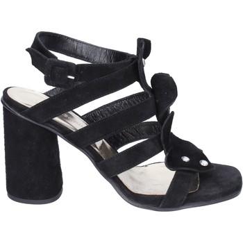 kengät Naiset Sandaalit ja avokkaat Sergio Cimadamore Sandaalit BK865 Musta