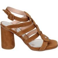 kengät Naiset Sandaalit ja avokkaat Sergio Cimadamore Sandaalit BK866 Ruskea