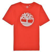 vaatteet Pojat Lyhythihainen t-paita Timberland LOLLA Punainen