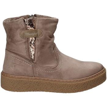 kengät Lapset Bootsit Wrangler WG17235 Harmaa