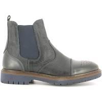 kengät Miehet Bootsit Rogers 2008B Sininen
