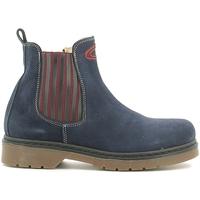 kengät Lapset Bootsit Alberto Guardiani GK22806G Sininen