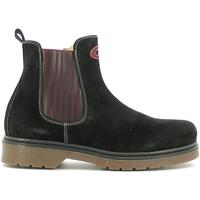 kengät Lapset Bootsit Alberto Guardiani GK22806G Musta