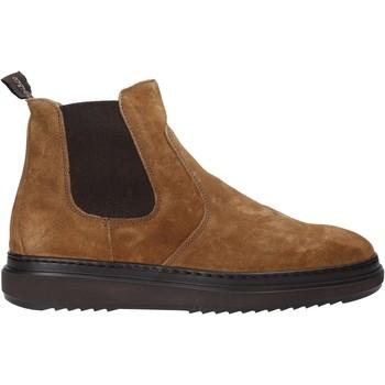 kengät Miehet Bootsit IgI&CO 4111477 Ruskea