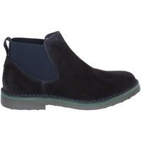 kengät Miehet Bootsit Rogers 20078 Sininen