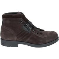 kengät Miehet Bootsit Rogers 3038B Harmaa