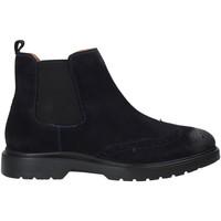 kengät Miehet Bootsit Impronte IM92006A Sininen