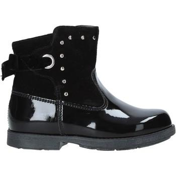 kengät Lapset Bootsit NeroGiardini A921275F Musta