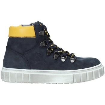 kengät Lapset Bootsit NeroGiardini A933721M Sininen