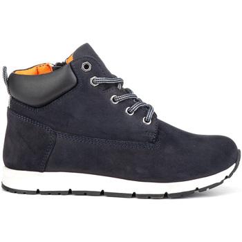 kengät Lapset Bootsit Lumberjack SB65301 001 M23 Sininen