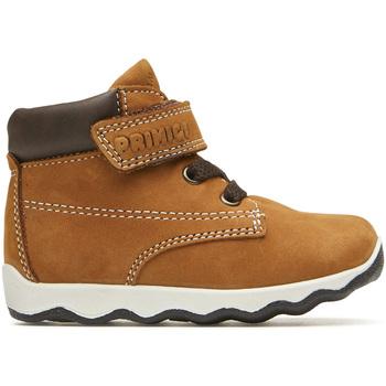 kengät Lapset Bootsit Primigi 4359311 Ruskea